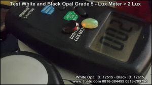 Opal ID: 12515 & 12615 - 2 LUX