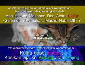 makanan-bidah-untuk-kucing